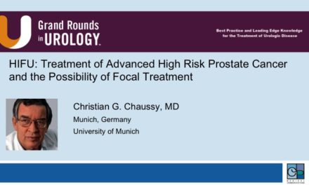 HIFU: Treatment of Advanced High Risk Prostate Cancer and the Possibility of Focal Treatment