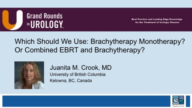 Which Should We Use: Brachytherapy, Monotherapy, or Combined EBRT and Brachytherapy