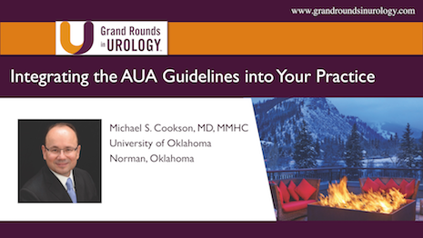 Integrating the AUA Guidelines into Your Practice