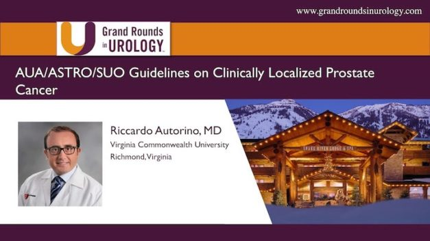 AUA/ASTRO/SUO Guidelines on Clinically Localized Prostate Cancer