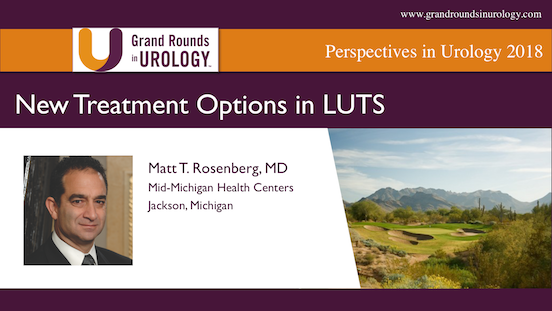 New Treatment Options in LUTS