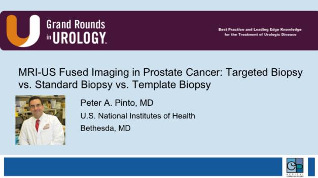 MRI-US Fused Imaging in Prostate Cancer: Targeted Biopsy vs. Standard Biopsy vs. Template Biopsy