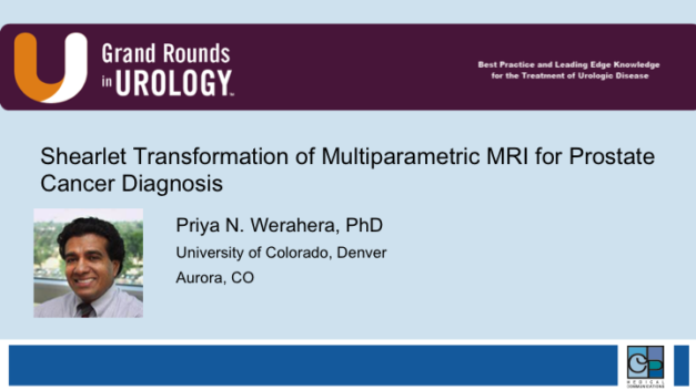 Shearlet Transformation of Multiparametric MRI for Prostate Cancer Diagnosis