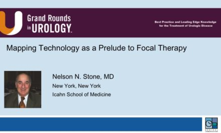 Mapping Technology as a Prelude to Focal Therapy