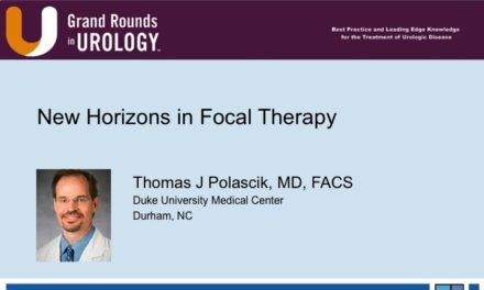 New Horizons in Focal Therapy