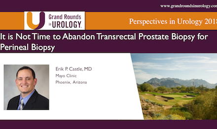 It is Not Time to Abandon Transrectal Prostate Biopsy for Perineal Biopsy