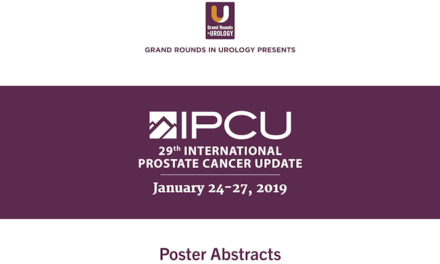 29th International Prostate Cancer Update Poster Abstracts and Presentations