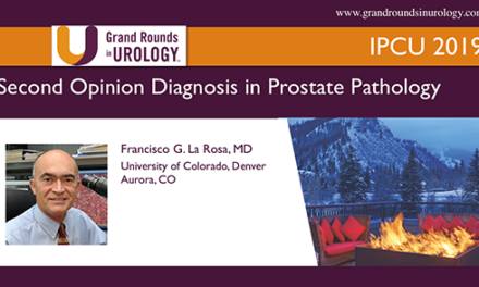 Second Opinion Diagnosis in Prostate Pathology