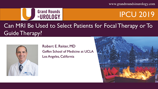 Can MRI Be Used to Select Patients for Focal Therapy or To Guide Therapy?