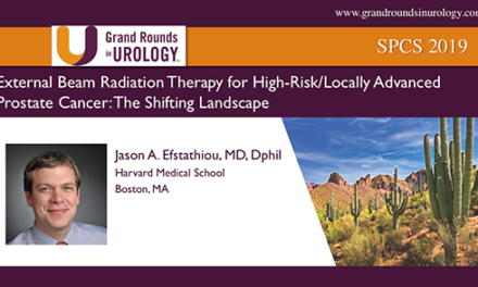 External Beam Radiation Therapy for High-Risk/Locally Advanced Prostate Cancer: The Shifting Landscape