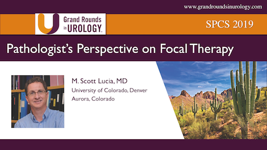 Pathologist's Perspective on Focal Therapy