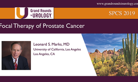 Focal Therapy of Prostate Cancer