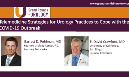 Telemedicine Strategies for Urology Practices to Cope with the COVID-19 Outbreak
