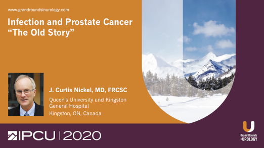 """Infection and Prostate Cancer: """"The Old Story"""""""