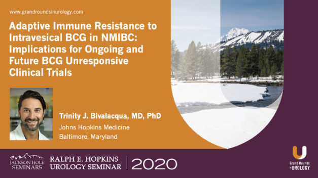 Adaptive Immune Resistance to Intravesical BCG in NMIBC: Implications for Ongoing and Future BCG Unresponsive Clinical Trials