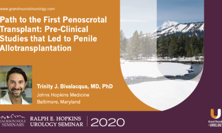 Path to the First Penoscrotal Transplant: Pre-Clinical Studies that Led to Penile Allotransplantation