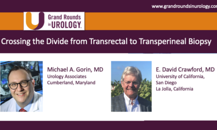 Crossing the Divide from Transrectal to Transperineal Biopsy
