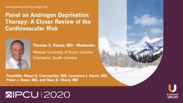 Panel on Androgen Deprivation Therapy: A Closer Review of the Cardiovascular Risk