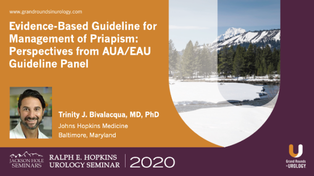 Evidence-Based Guideline for Management of Priapism: Perspectives from AUA/EAU Guideline Panel