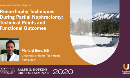 Renorrhaphy Techniques During Partial Nephrectomy: Technical Points and Functional Outcomes