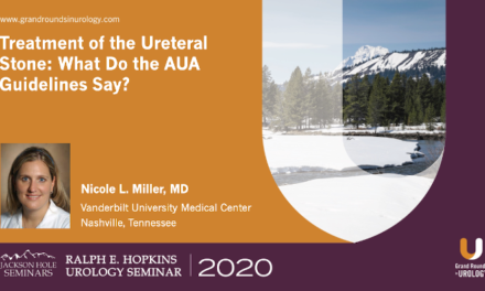 Treatment of the Ureteral Stone: What Do the AUA Guidelines Say?